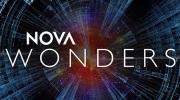NOVA Wonders logo